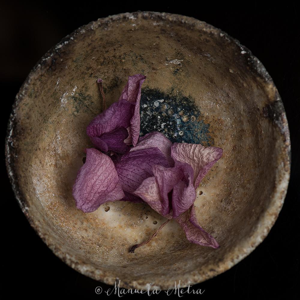 Shibui Ceramic Bowl