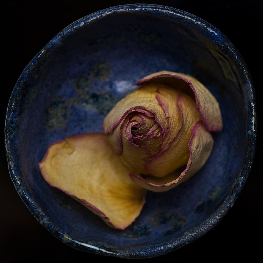 Wabi Sabi blue cup